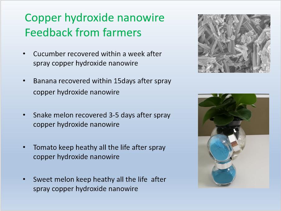 Copper Hydroxide Nanowire Feedback from Farmers